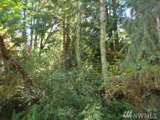 0 Camano Ridge, Camano Island, WA 98282 (#1421509) :: Ben Kinney Real Estate Team