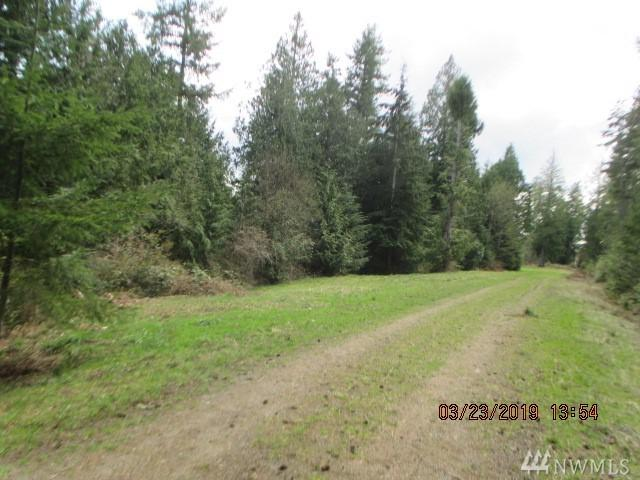 11-lot Whitney Court, Quilcene, WA 98376 (#1429174) :: Better Properties Lacey