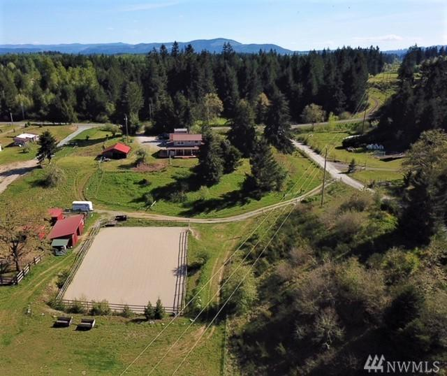 12430 118th Ave SE, Rainier, WA 98576 (#1453814) :: Real Estate Solutions Group
