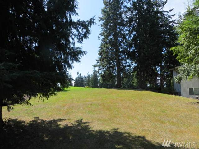 9999 Horizon View Dr, Sequim, WA 98382 (#1498613) :: Northern Key Team