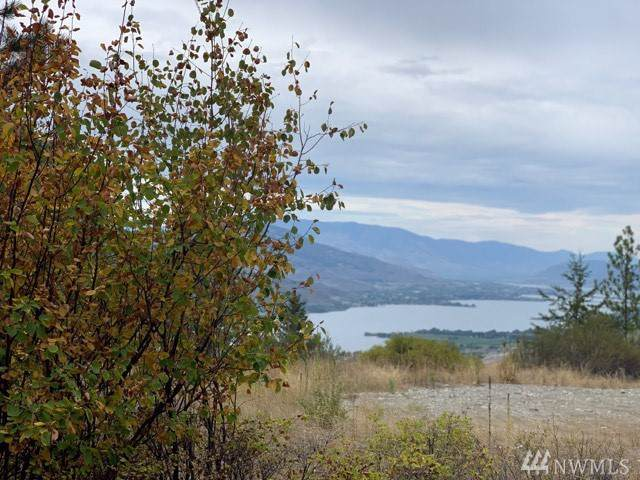 0-TBD Gold Rush Ridge Road, Oroville, WA 98844 (#1513948) :: Northern Key Team