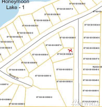 0-XXXX Minor Wy, Greenbank, WA 98253 (#1515767) :: The Kendra Todd Group at Keller Williams