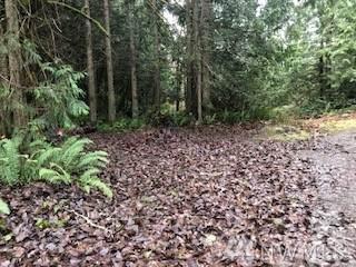 0 Spotted Owl Lane, Sequim, WA 98382 (#1552071) :: Becky Barrick & Associates, Keller Williams Realty