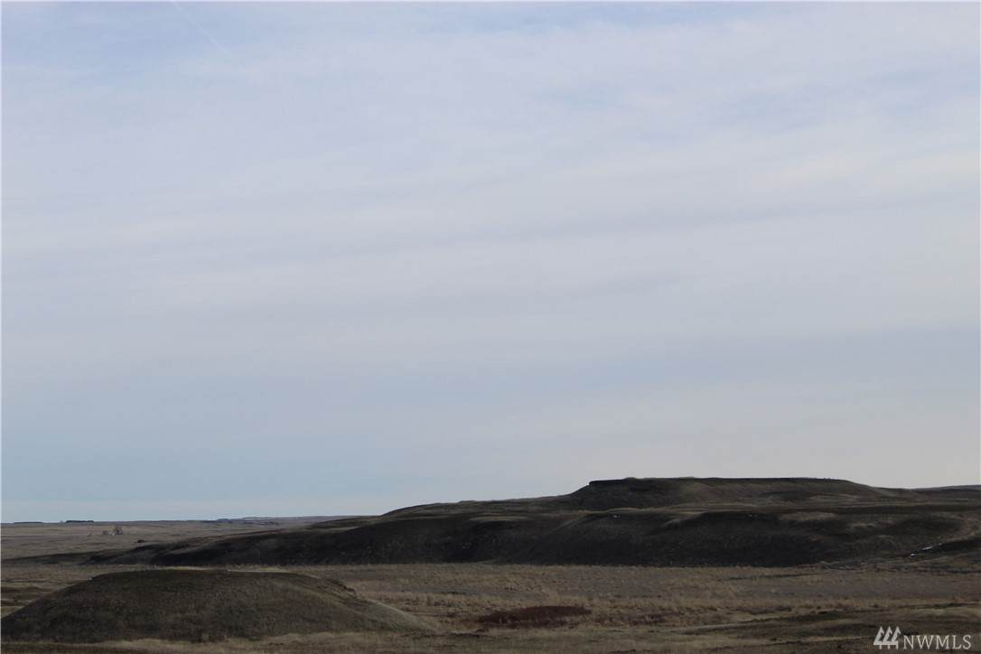 147 Eagle Springs Ranch - Photo 1