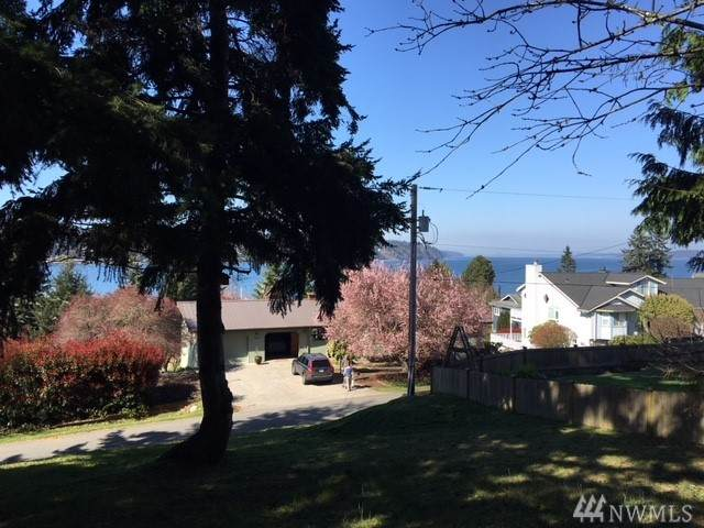 0-XXX Dorsey Dr, Freeland, WA 98249 (#1582676) :: Ben Kinney Real Estate Team