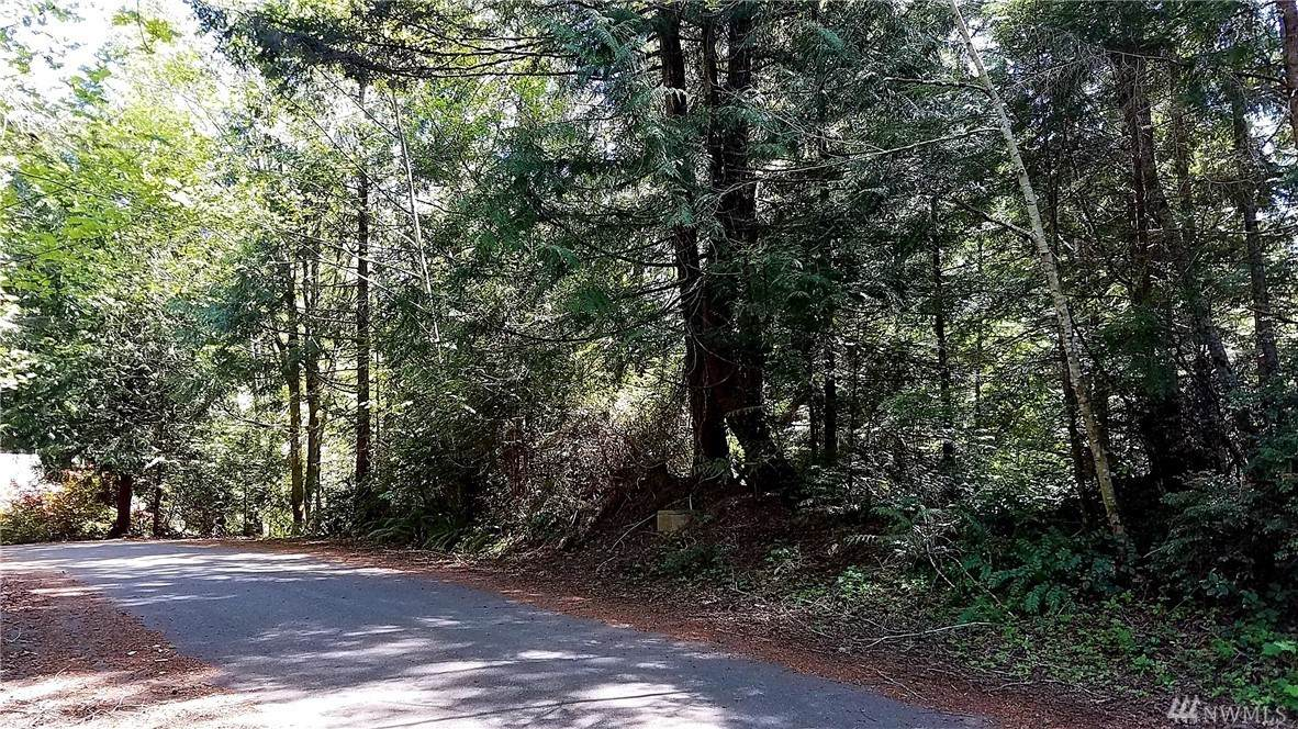68 Trail Head Loop - Photo 1