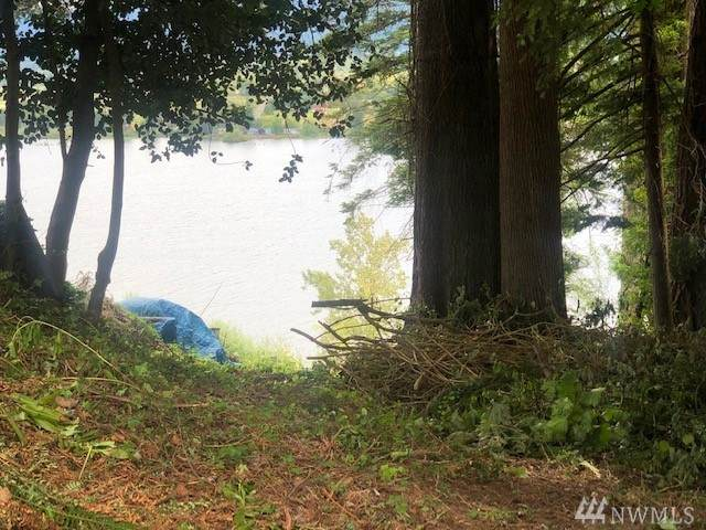 0-Lot 10 Next To 660 Columbia St, Cathlamet, WA 98612 (#1601087) :: Alchemy Real Estate