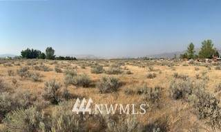 1 Bide-A-Wee Road, Omak, WA 98841 (#1662092) :: NextHome South Sound