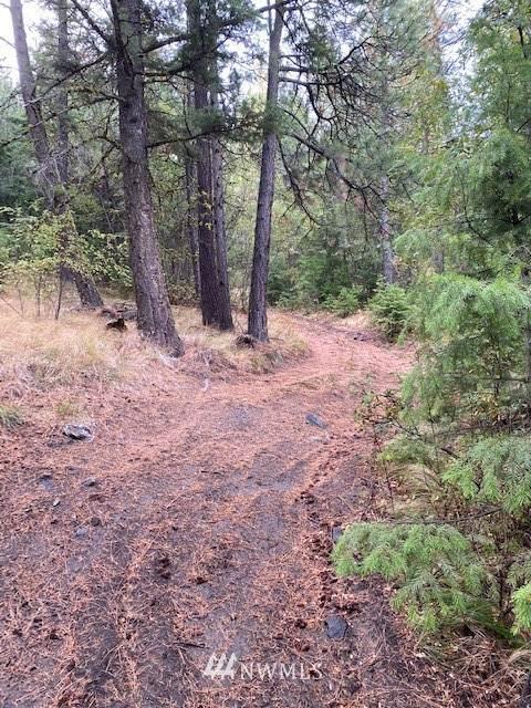 0 E Stiss Canyon Way, Wenatchee, WA 98801 (#1668619) :: Ben Kinney Real Estate Team