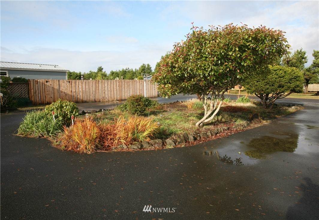 802 Oysterville Road - Photo 1