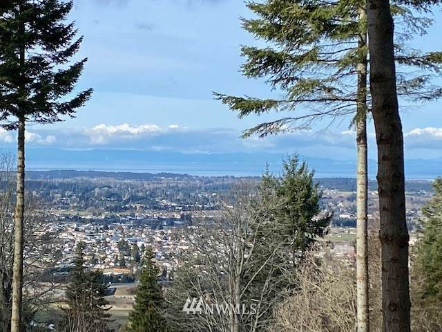 0 Lot 4 Fawn Lane, Sequim, WA 98382 (MLS #1723320) :: Brantley Christianson Real Estate