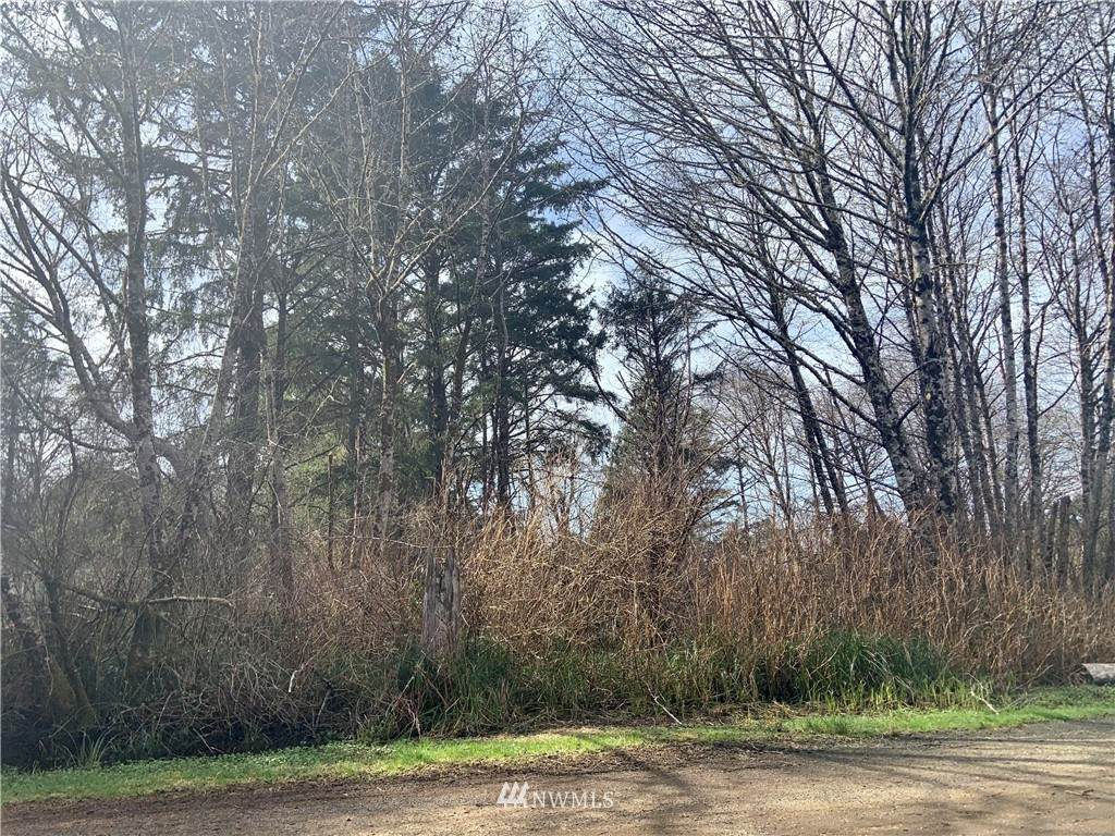 37 Woodland Drive - Photo 1