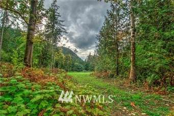 0 Wilderness Drive - Photo 1