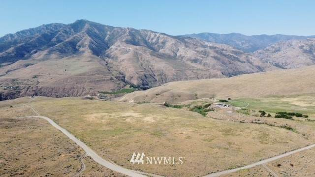 0 Lot 4 Buckhorn Mountain Road, Pateros, WA 98846 (#1804905) :: The Shiflett Group