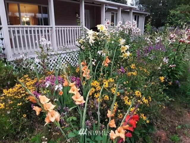 47 W Fairview Road, Grays River, WA 98621 (#1817563) :: The Shiflett Group