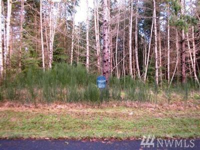 0 NE Lot 12 Broughton Ct, Hansville, WA 98340 (#1082383) :: Ben Kinney Real Estate Team