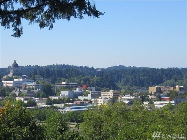 909 Pine Ave NE, Olympia, WA 98506 (#1171124) :: Ben Kinney Real Estate Team