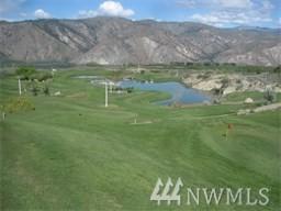 300 Desert Canyon Blvd, Orondo, WA 98843 (#1175247) :: Real Estate Solutions Group