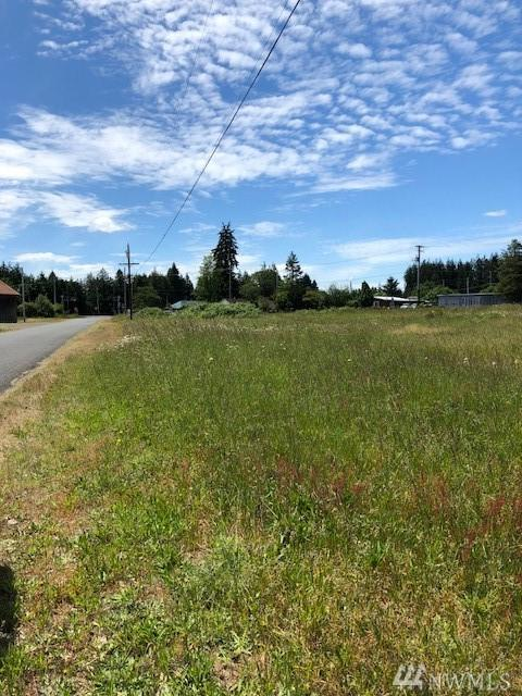 486 Monte Brady Rd., Montesano, WA 98563 (#1250620) :: Ben Kinney Real Estate Team