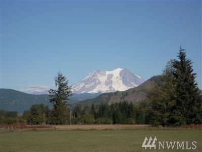 353 Pleasant Valley Rd, Mineral, WA 98355 (#1304391) :: Homes on the Sound