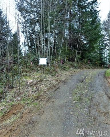 410 Studebaker Spur 1, Castle Rock, WA 98611 (#1421044) :: Crutcher Dennis - My Puget Sound Homes