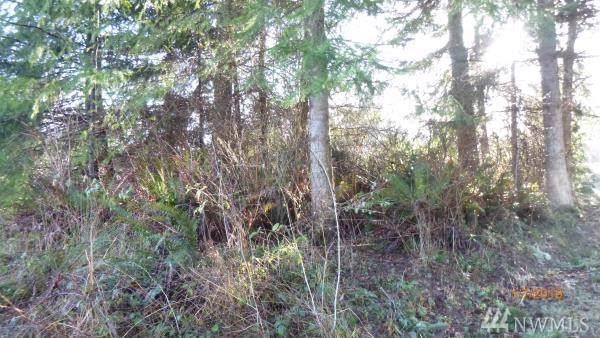 580 Lake Mastie Rd, Coupeville, WA 98239 (#1541454) :: Lucas Pinto Real Estate Group
