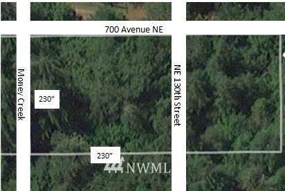 70001 NE 130th Street, Skykomish, WA 98288 (#1790472) :: Priority One Realty Inc.
