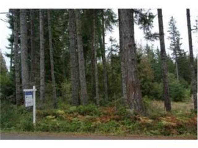 581 E Phillips Lake Loop Rd, Shelton, WA 98584 (#608552) :: Ben Kinney Real Estate Team