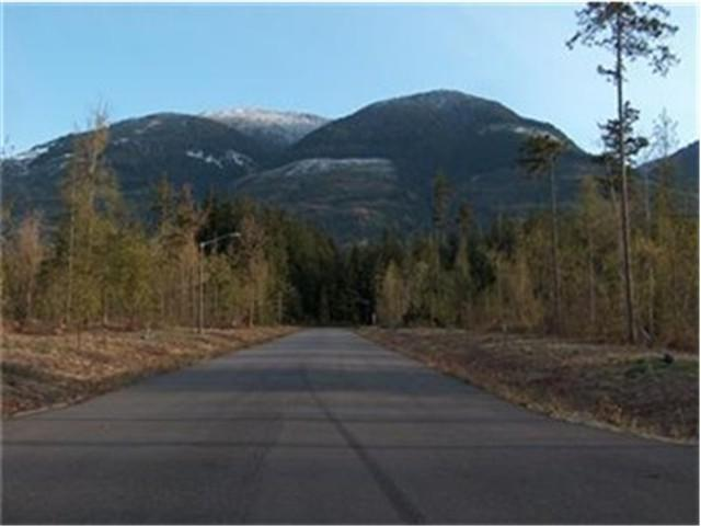0-Lot 1 Timberland Ct, Concrete, WA 98237 (#673378) :: Hauer Home Team