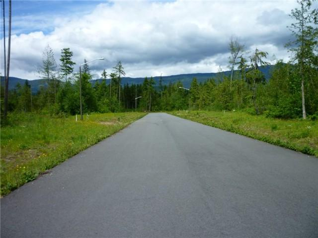 0-Lot 20 Trillium Lane, Concrete, WA 98237 (#673460) :: Real Estate Solutions Group