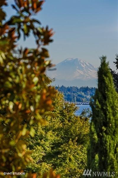 5552 NE Windermere Rd, Seattle, WA 98105 (#1433899) :: Kimberly Gartland Group
