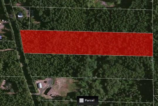 2 Tahuya River Rd, Tahuya, WA 98588 (#787187) :: Ben Kinney Real Estate Team