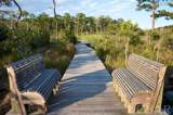 169 Croatan Woods Trail - Photo 4