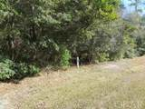 128 Croatan Woods Trail - Photo 5