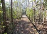 128 Croatan Woods Trail - Photo 9