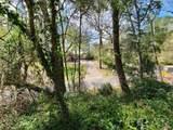 300 Dogwood Trail - Photo 28