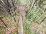 300 Dogwood Trail - Photo 32