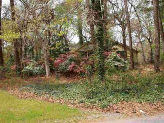 73 Trinitie Trail Lot 395, Southern Shores, NC 27949 (MLS #95920) :: Matt Myatt – Village Realty