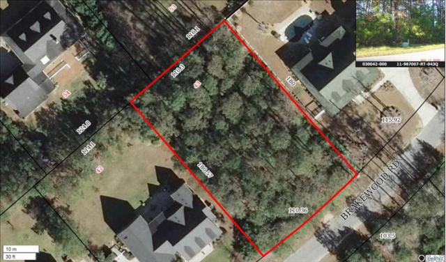 197 Brakewood Road Lot # 43, Manteo, NC 27954 (MLS #100555) :: Outer Banks Realty Group