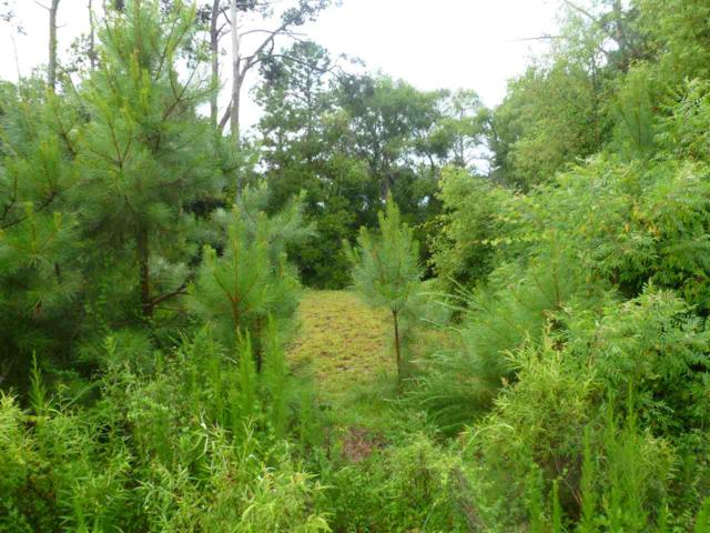 1270 Lost Lake Lane Lot 259, Corolla, NC 27927 (MLS #101134) :: Outer Banks Realty Group