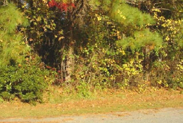 126 Daphne Lane Lot 18, Manteo, NC 27954 (MLS #101850) :: Surf or Sound Realty