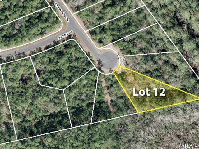 242 Croatan Woods Trail Lot 12, Manteo, NC 27954 (MLS #102049) :: Outer Banks Realty Group