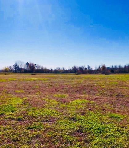 146 Pelican Pointe Drive Lot 3 61, Elizabeth City, NC 27909 (MLS #102474) :: Hatteras Realty