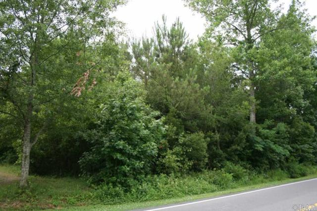 850 Levels Road Lot 2, Columbia, NC 27925 (MLS #105431) :: Midgett Realty