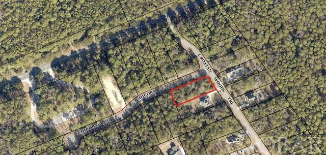 145 Croatan Woods Trail Lot 30, Manteo, NC 27954 (MLS #110416) :: Sun Realty