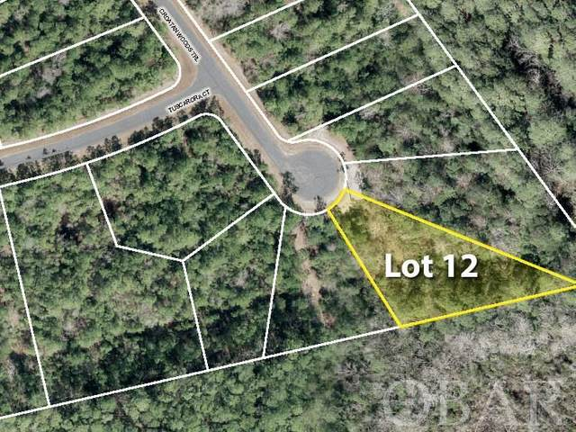 242 Croatan Woods Trail Lot 12, Manteo, NC 27954 (MLS #112620) :: Brindley Beach Vacations & Sales