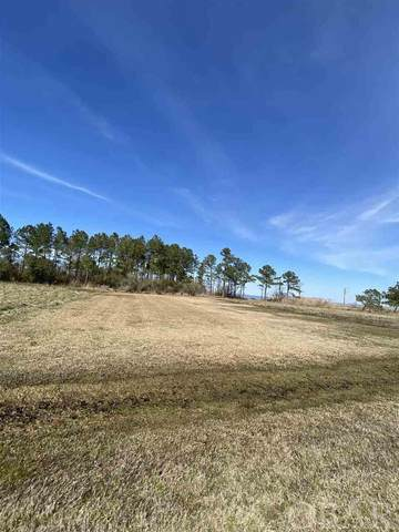Owens Lane Lot 14, Columbia, NC 27925 (MLS #113319) :: Randy Nance | Village Realty