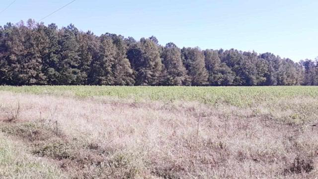 SR  1300 Hwy 94 & Elementary School Road Unit0/Lot0, Columbia, NC 27925 (MLS #102259) :: Outer Banks Realty Group