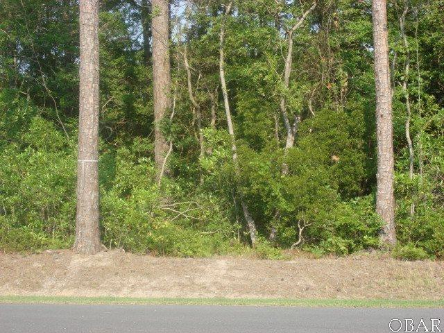 118 Madeline Drive Lot, Manteo, NC 27954 (MLS #101192) :: Hatteras Realty