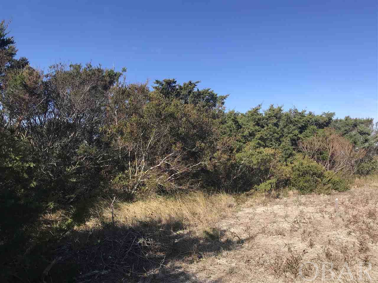 https://bt-photos.global.ssl.fastly.net/obxmls/orig_boomver_1_101582-2.jpg